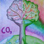 L'albero e noi disegno vincitore